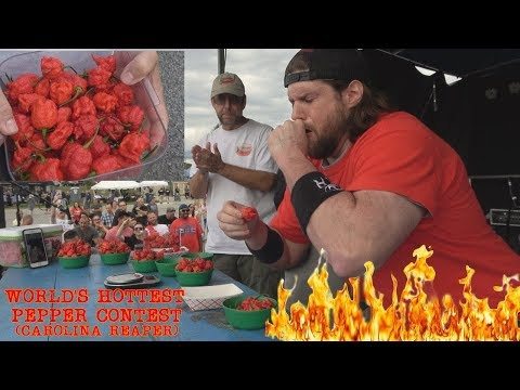 World's hottest pepper may have triggered this man's