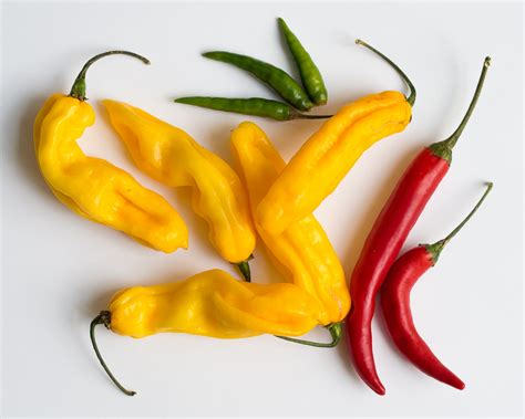 Hot chilli peppers from Calabria: history, health
